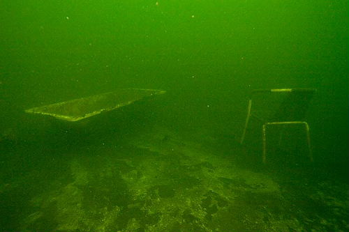 unterwasserfotos_21_20141106_1252971794.jpg