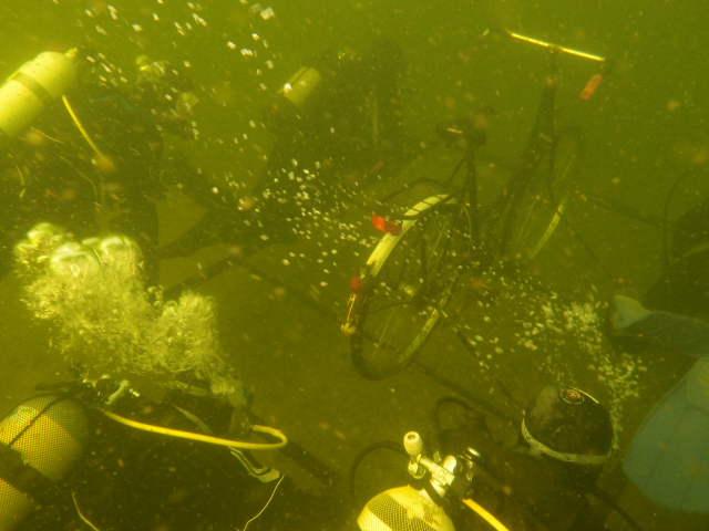 unterwasserfotos_4_20141106_1103178336.jpg